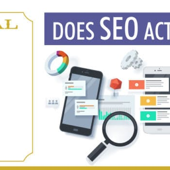 Doctor Digital The Column | Does SEO Actually Work?